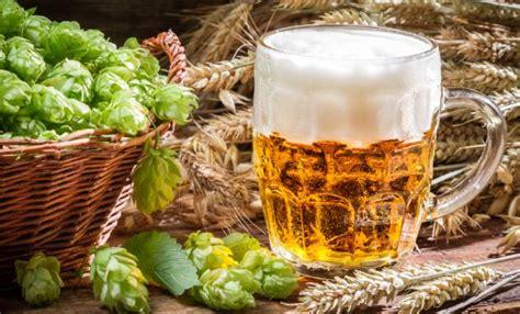 bier brauen buecher hoerbuecher einebinsenweisheit