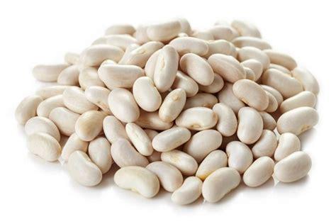 feijão valor nutricional de feijão espécie de feijão