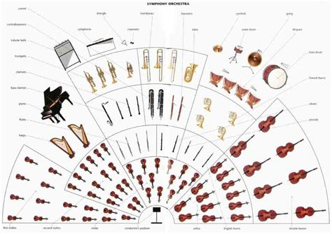 lesson 3 instruments of the orchestra