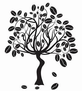 Coffee Tree  Vector Illustration