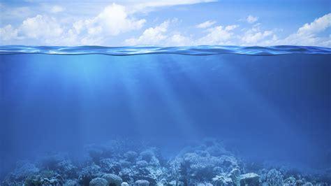 Anime Night Sky Wallpaper Wallpaper Coral Reef Under The Sea Underwater Hd 4k Nature 5517