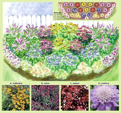 sun border plants 37 best images about garden full sun perennials on pinterest gardens sun and summer plants