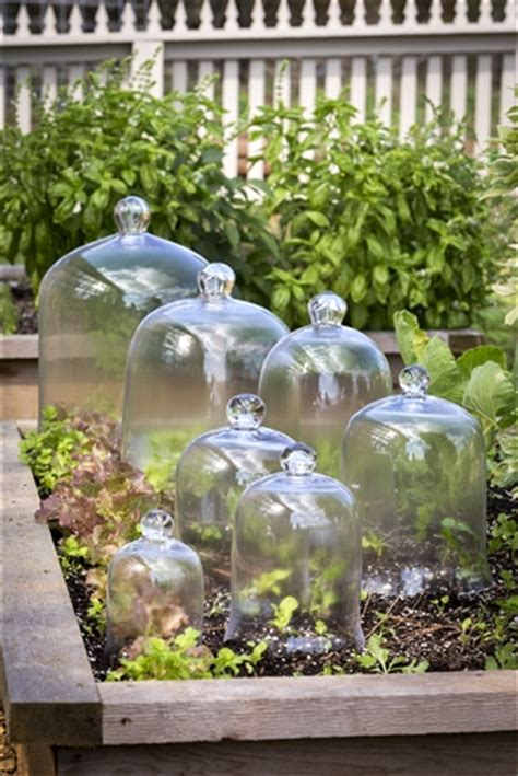 glass bell jars garden cloches