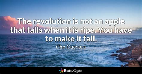 che guevara  revolution    apple  falls