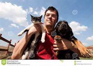 stock images vet holding dog cat image