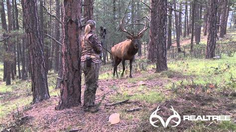 yard files female bowhunter stares  giant bull elk