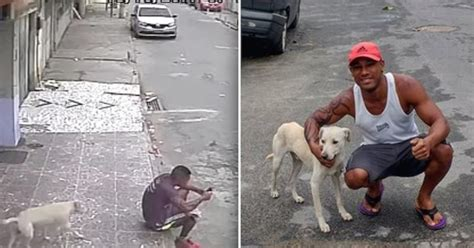 Video Of Stray Dog Peeing On Man Goes Viral But The Man