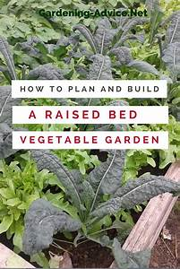 Raised Vegetable Garden Beds The Raised Bed Garden Plans