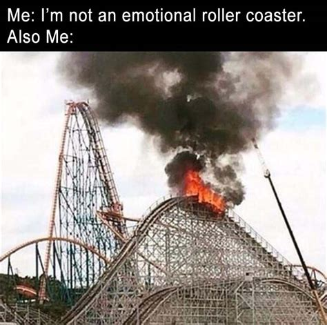 Roller Coaster Meme - funny pictures of the day 33 pics daily lol pics