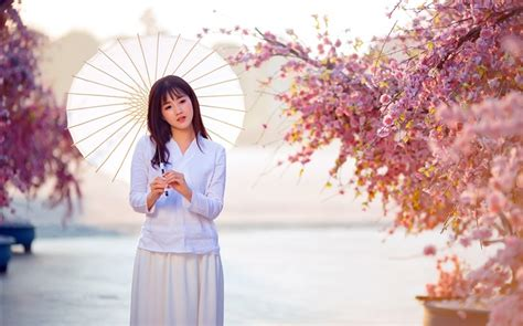asian girl umbrella pink flowers beautiful pictures hd