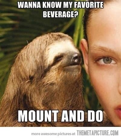 Sloth Jokes Meme - 14 best images about creepy sloths on pinterest creepy sloth jokes and funny