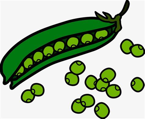 Green Beans Clipart Green Beans Green Beans Food Png Image And Clipart For