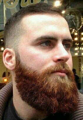 male beauty   hair beard styles beard