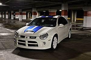 2005 Dodge Neon Srt Cars for sale