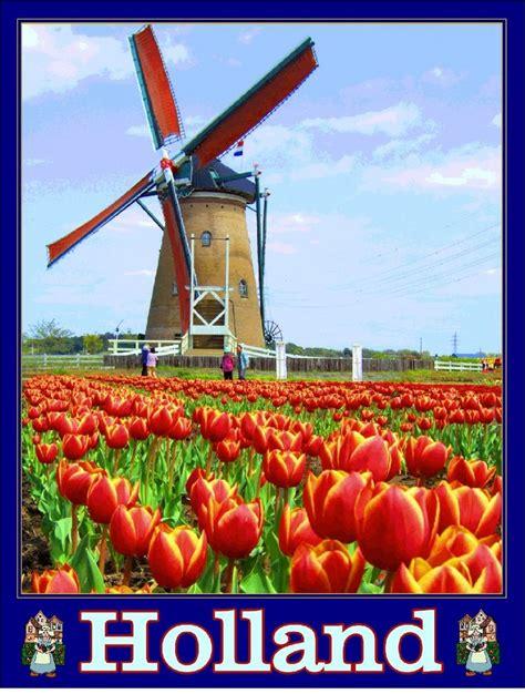 Holland Dutch Netherlands Windmill Tulips European Travel