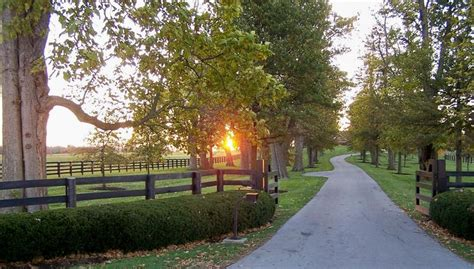 country driveway pinterest the world s catalog of ideas