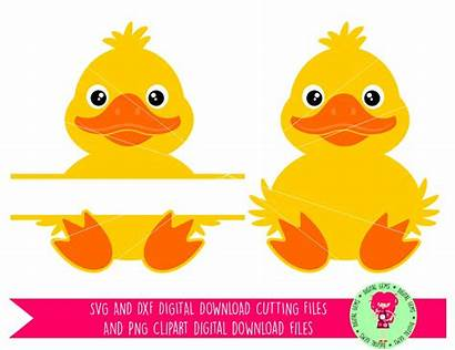 Svg Silhouette Cameo Duckling Duck Split Clipart