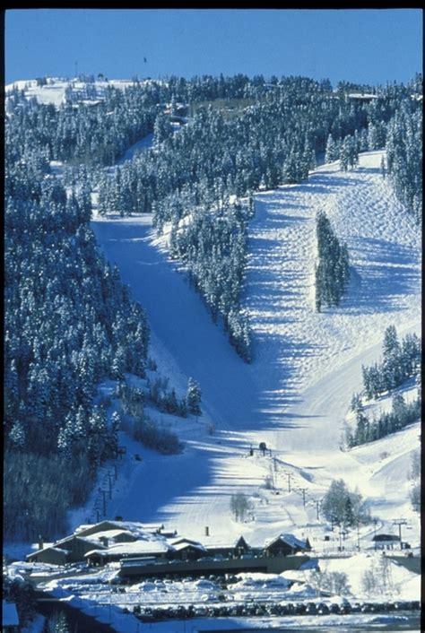 skier hits tree dies  deer valley  tracks  ski magazine