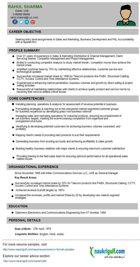 resume format uae resume templates