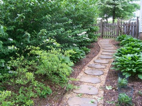 alternatives to grass in backyard alternatives to gas powered lawn mowers severna park md 7429