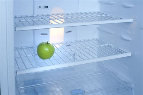 Free Stock Photo 8133 One green apple inside a fridge