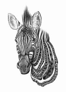 Aztec zebra Art Print | Pictures, Zebra art and Nice