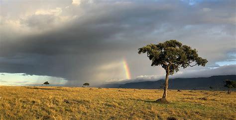 mara conservancy kenya wild philanthropy