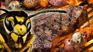Was Hilft Gegen Wespen : entspanntes grillen was hilft gegen wespen worlds of food kochen rezepte k chentipps di t ~ Whattoseeinmadrid.com Haus und Dekorationen