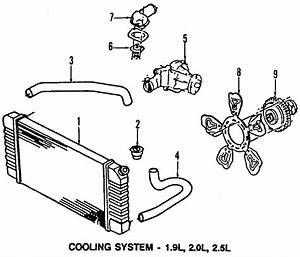 Chevrolet S10 Radiator Coolant Hose  2 2 Liter  S