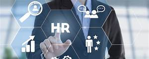 Provider Opportunities For Netpeo And Hr