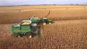 Steingard Corn Harvest - YouTube