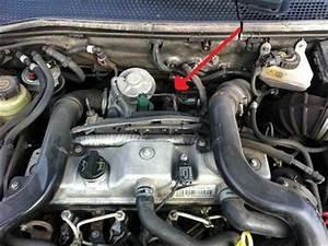 Probleme Demarrage A Froid Diesel : d marrage froid par temp rature n gative ford focus diesel auto evasion forum auto ~ Gottalentnigeria.com Avis de Voitures