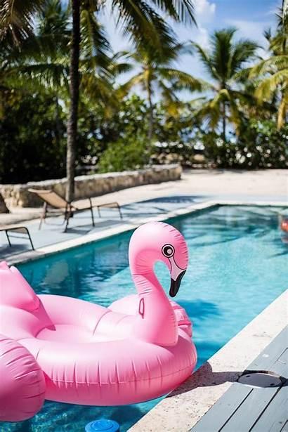 Pool Wallpapers Flamingo Backgrounds Float Fun Neon