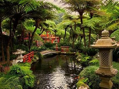 Pond Garden Japan Wallpapers Desktop
