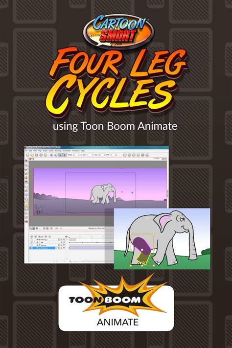 toon boom animate animation video tutorial bundle