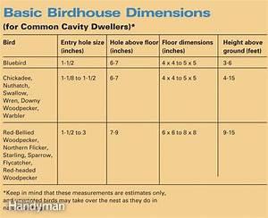Build a Backyard Birdhouse The Family Handyman