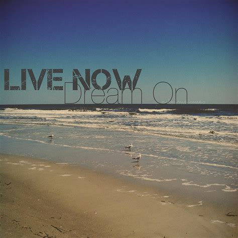 Live Now Dream On Photograph By Nikki Mcinnes
