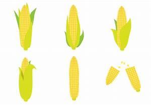 Ear Of Corn Vector Set - Download Free Vector Art, Stock ...
