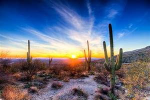 """Tucson Sunset"" by Ray Chiarello Redbubble"