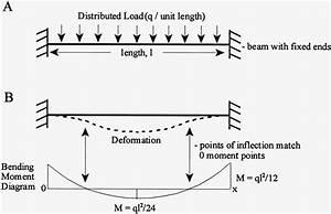 The Elastic Bending Effect