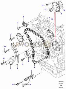Timing Chain - 2 4 Tdci