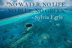 Quotes About Sa... Onegreenplanet Quotes
