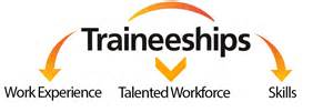 what is a traineeship