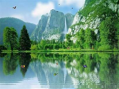 Nature Wallpapers Friendly Eco Beautifull Lovely Kinds