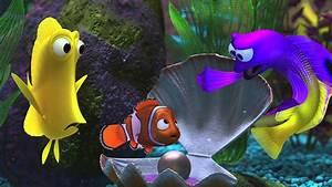 Finding Nemo 3d Clip U002639iu002639m From The Oceanu002639 Youtube