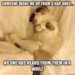 SLEEPING CAT MEMES image memes at relatably.com