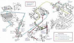 Audi A8 Wiring Diagram Pdf