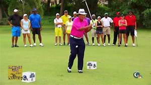 Golfer attemps trick shot and hits himself in the balls ...