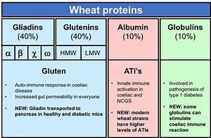 Gluten – what we learned in 2016 (part 1) – Rosemary ...