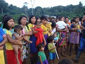 Los Grupos Étnicos de Colombia: Característica ubicación